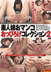素人娘おマンコおっぴろげコレクション Vol.2