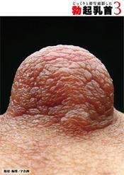 「じっくりと接写撮影した勃起乳首 3」のパッケージ画像