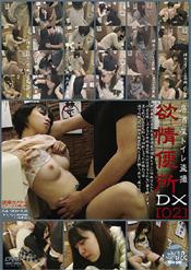 「居酒屋トイレ盗撮 欲情便所DX[02]」のパッケージ画像