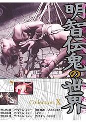 「明智伝鬼の世界 Collection 10」のパッケージ画像