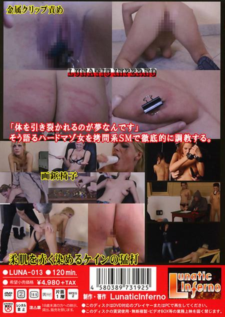 拷問調教 VOL.1 激痛奴隷 鞭・ケイン・スパンキング・画鋲・クリップ責め