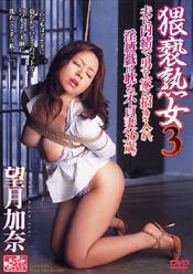 猥褻熟女3