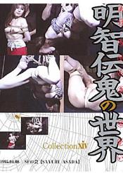華鳳翔 明智伝鬼の世界コレクション 14